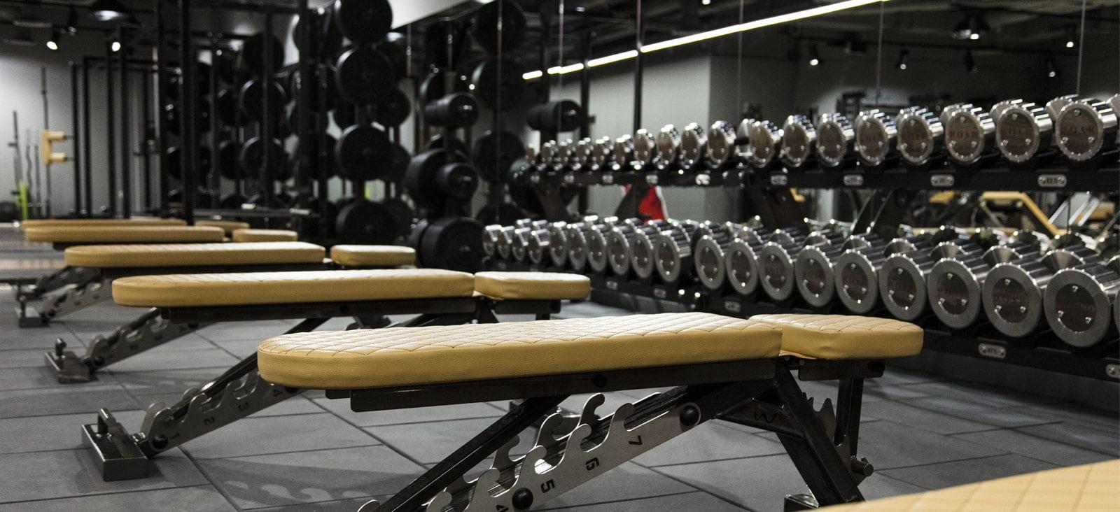 roar fitness bank gym